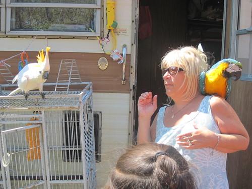 M. & Her Birds