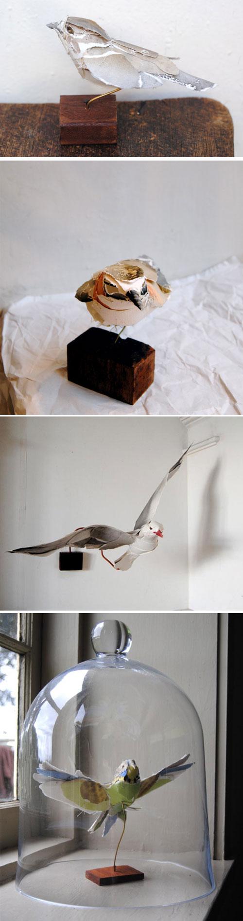 Anna-Willi-birds