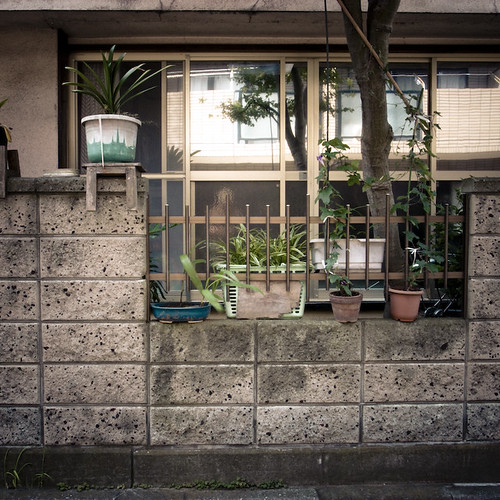 Garden Pon Wall