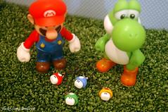 Mario´s mushrooms