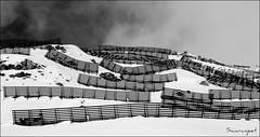 Snowslide breakers - IMG_1310BW (Swaranjeet) Tags: winter india canon switzerland europe photos zurich glacierexpress 7d favourites zermatt thane mumbai snowscape 2010 singh stmoritz sjs eoe apsc canonefs1755mmf28isusm swaran efs1755f28isusm eos7d canoneos7d sjsphotography httpgenderbyteswordpresscom swaranjeet swaranjeetsingh swaranjeetphotography sjsvision