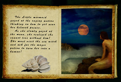 An Old Book about The Little MermaidbookOld