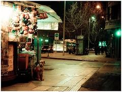 se miran) Anhelar las sobras (paralau) Tags: santiago dog perro perros kiosko losheroes