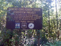 Bowers Cove Sign