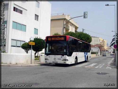 Valpi 253