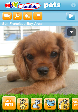 eBay Classifieds Pets iPhone App homescreen