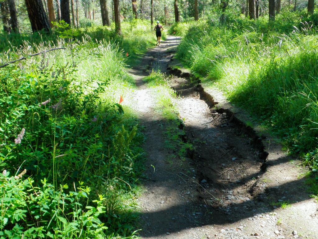 2010 Haulin' Aspen Trail Marathon and 1/2 Marathon
