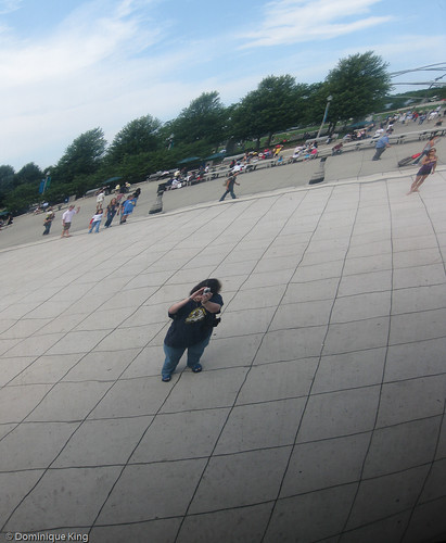 Chicago's Bean-2