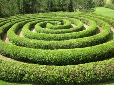 Circle Maze
