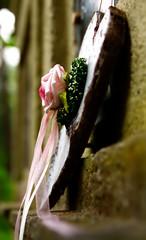 Letzte Liebe (textclip) Tags: friedhof rose grab herz darmstadt liebe trauer urne waldfriedhof