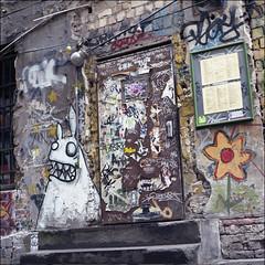The flower and the monster (Alvaro's Pix) Tags: street house color berlin art 120 6x6 home wall mediumformat germany paint bricks stickers graffity backstreet 120film hasselblad scanned carrete c41 mittelformat epsonv700 formatomedio kodakektar100 hasselblad2000fcw carlzeissplanarf80mmt manualexif130f56