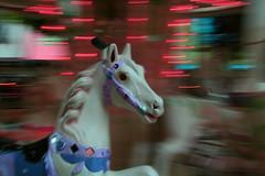 """petit cheval tourne tourne ! (""""wil"""") Tags: action ariege flou mirepoix mange chevaldebois"""