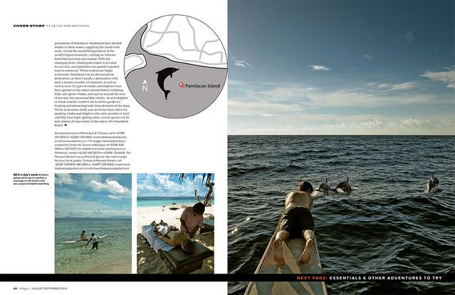 Bohol Pamilacan Island