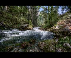 Waldbach Quelle (Gerald W. Photography) Tags: mountains alps nature water forest river austria österreich nikon wasser natur berge bach alpen fluss wald dri source hdr hdri 2010 countyside quelle d90 millstättersee
