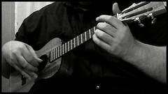 Pupu A`o `Ewa (minipixel) Tags: music hawaii video ukulele hawaiian uke luthier koa johnking tenor petehowlett zi8 himeni pearlyshells pupuaoewa