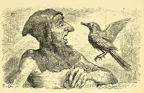 Graculus et Avaurs