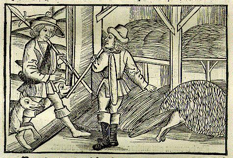 Vulpes et Lignator