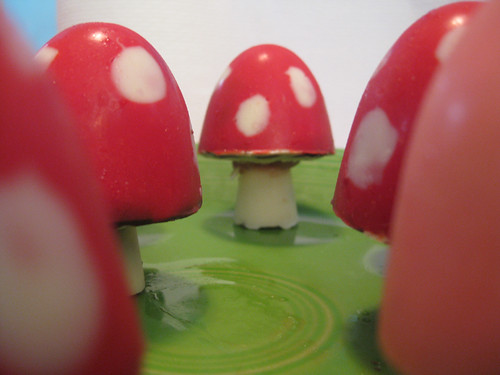 chocolate mushrooms