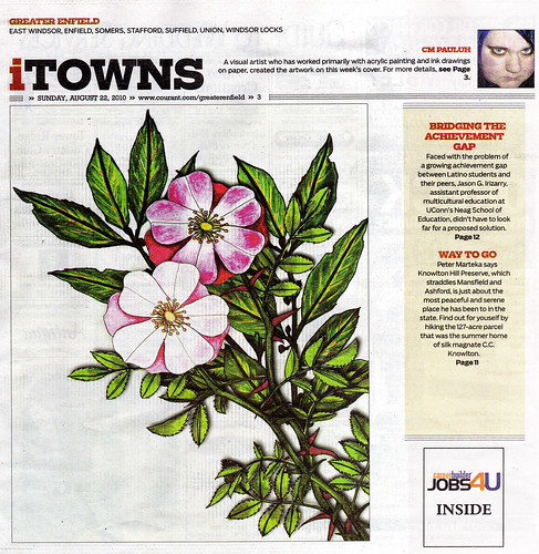 My drawing, The Language of Flowers, published in The Hartford Courant