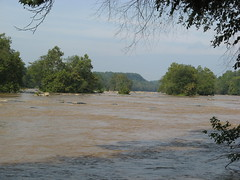 Looking up Yadkin River toward Bean Shoals Photo