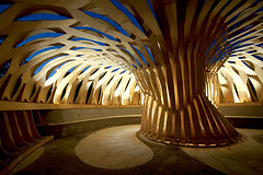 golden.tree (- rickster -) Tags: wood architecture university stuttgart architektur uni universitt holz plywood pavillon rickster