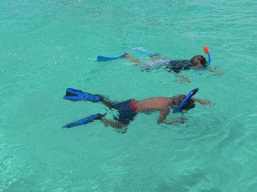 Bimini Snorkeling