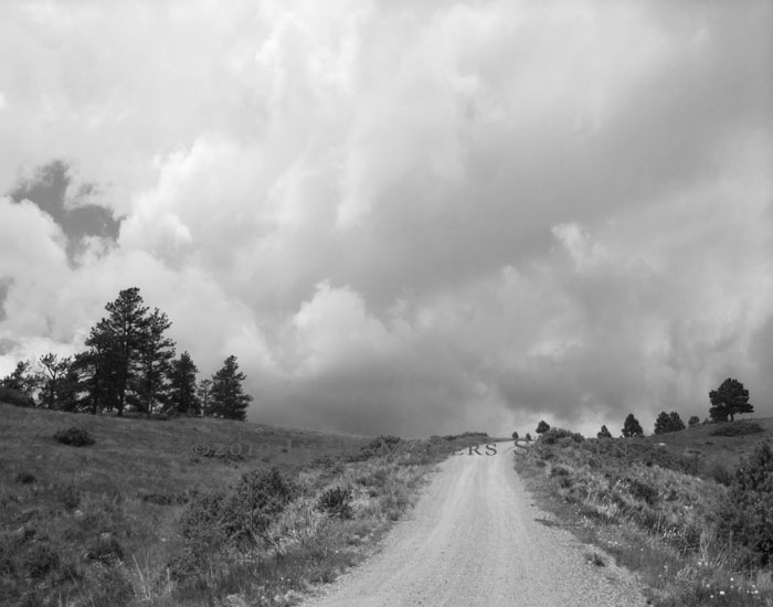 Black and white photo of a Less Traveled Road in back country Colorado.