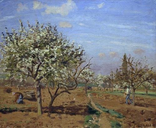 Orchard in Bloom, Louveciennes by Camille Pissarro