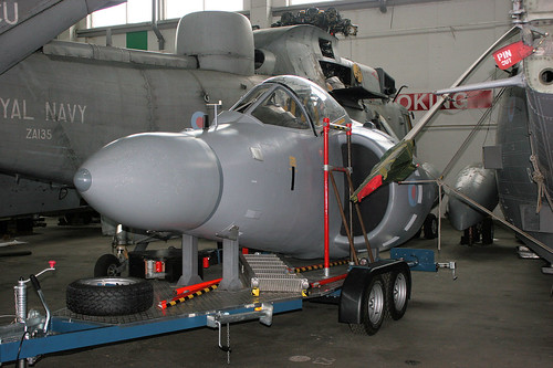 Sea Harrier CIM