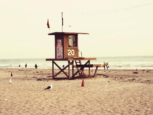 Beach Day 14