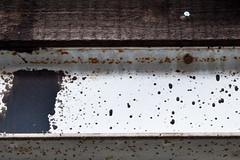 p26 (Das halbrunde Zimmer) Tags: germany deutschland dresden saxony dresdenfriedrichstadt suchspiel