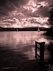 Llangorse Lake (steved_np3) Tags: lake wales landscape south brecon llangorse