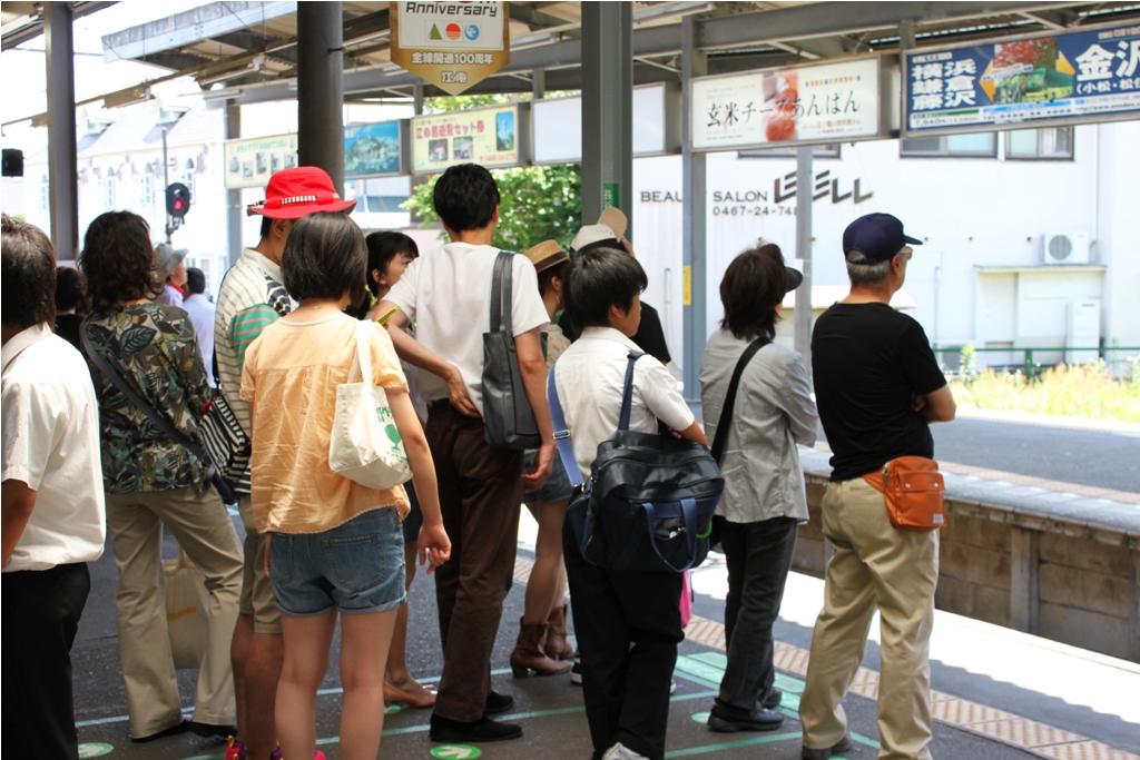 Hydrangeas - Exploring Hase, Kamakura (2)