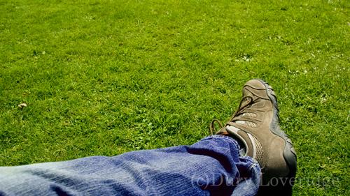 trainer-on-grass