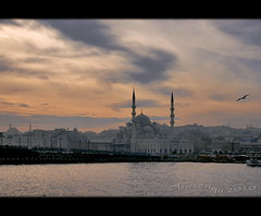 the golden horn (bozenqa) Tags: bridge sea bird turkey mosque istambul estambul goldenhorn egyptianbazaar stambul cuernodeoro bosphor turqa hagasofia goldenhornbridge bozenqa