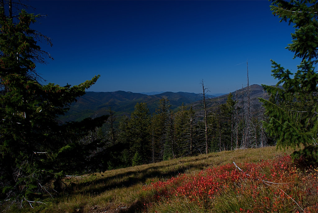 Higher end of the trail to Burnt Fork innacle