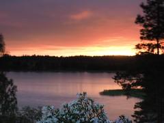 Summer vacation view (Jarno Nurminen) Tags: flickrfriday summervacations 09 3stop nisi summer flowers seascape olympusinspired olympus mzuiko1240f28pro reversegrad sunset
