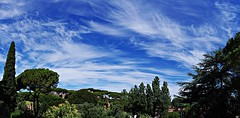 Come un pittore sulla sua tela ... As a painter on his cloth (Marco_964) Tags: cielo blu nuvole pittore tela roma pentax sky clouds blue cloth painter tree alberi landscape panorama urbano