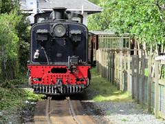Garratt #87 - Welsh Highland Railway, Porthmadog 2017 (Dave_Johnson) Tags: britanniabridge bridge welshhighlandrailway welshhighland rheilffordderyri rheilffordd eryri whr narrowgaugerailway narrowgauge greatlittletrainsofwales railway rail steamrailway wales steamengine steamtrain steamlocomotive steam train loco locomotive porthmadogharbourstation railwaystation hgg16 ngg16class garratt johncockerillcompany cockerill gwynedd porthmadog