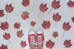 Canada Day! (YetAnotherLisa) Tags: chucks converse canada canadaday leaves red self portrait