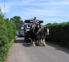 Chalvington: horse-drawn transport.