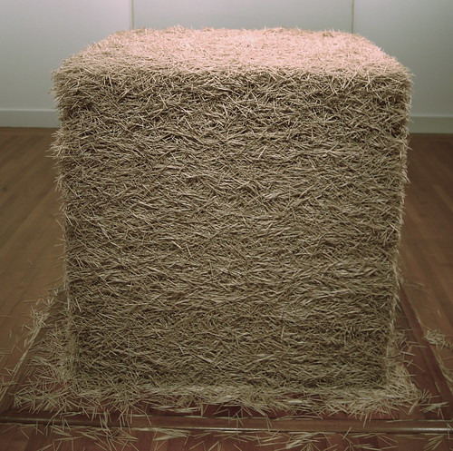 Tara Donovan, Untitled (Toothpicks), 2004 by 16 Miles of String.