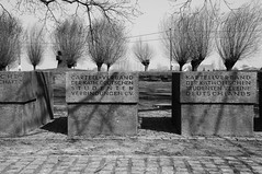 German Military Cemetery Langemark (bm^) Tags: white black cemetery grave blackwhite nikon war belgium belgique zwartwit tomb belgi ieper westvlaanderen langemark zwart wit worldwar oorlog kerkhof d90 wereldoorlog zerk blackwhitephotos flandersfield  westernflanders nikond90bw mygearandmebronze