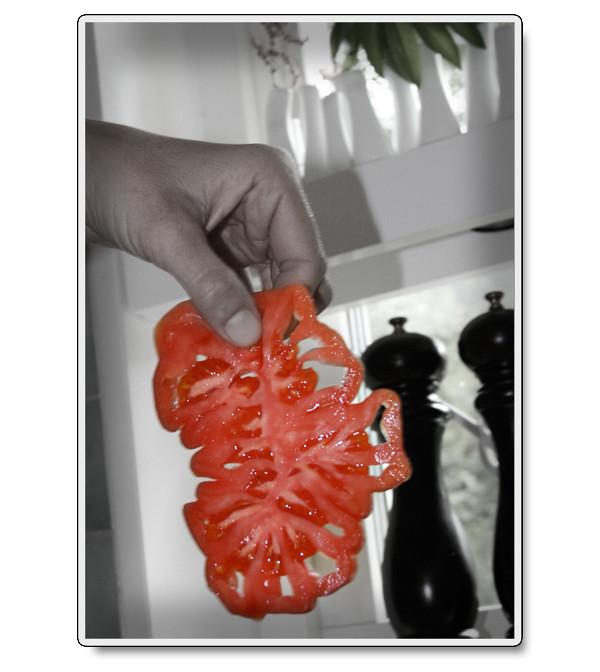 Knasig tomat