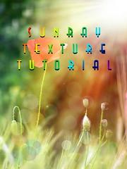 Tutorial - sunlight texture (Alin B.) Tags: summer sunlight texture nature field spring wheat meadow poppy sunbeam tutorial sunray alinb
