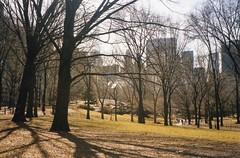 Central Park (jane_sanders) Tags: park nyc newyorkcity newyork centralpark manhattan solowbuilding generalmotorsbuilding
