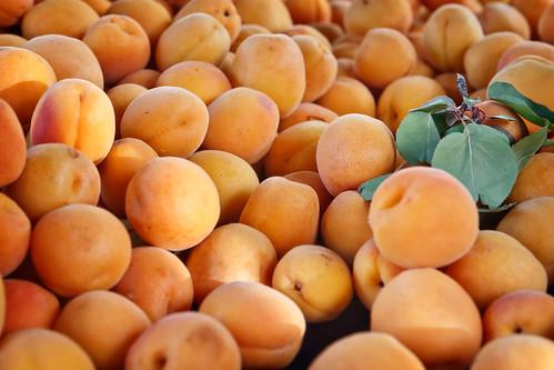Mound of Apricots