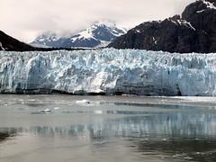 Glacier Bay (elj4176) Tags: june coral alaska bay princess olympus glacier 2010 eugenejohnson scenicsnotjustlandscapes sp565uz