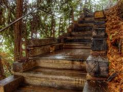 Simpler Stairs (magnetic lobster) Tags: california rain stairs bigsur hdr postranchinn sierramarrestaurant