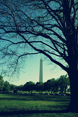 Washington Monument - Washington, DC. (Explored!) (VinothChandar) Tags: birthday usa monument architecture america freedom washingtondc us dc washington memorial president unitedstatesofamerica 4th free structure congress nationalmall tall july4th independence july4 washingtonmonument independenceday georgewashington usindependence psmjulycompetition